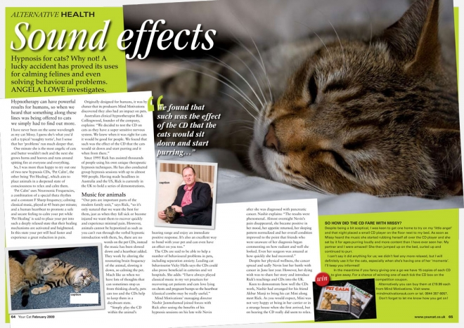 Your Cat magazine article